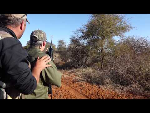 Hunting With Marvel Africa Safaris South Africa