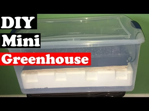 How To Make An Indoor Greenhouse - DIY (mini Greenhouse)