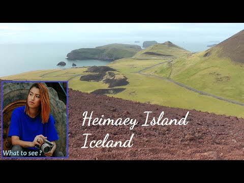 WHAT TO SEE IN Heimaey Island, Iceland