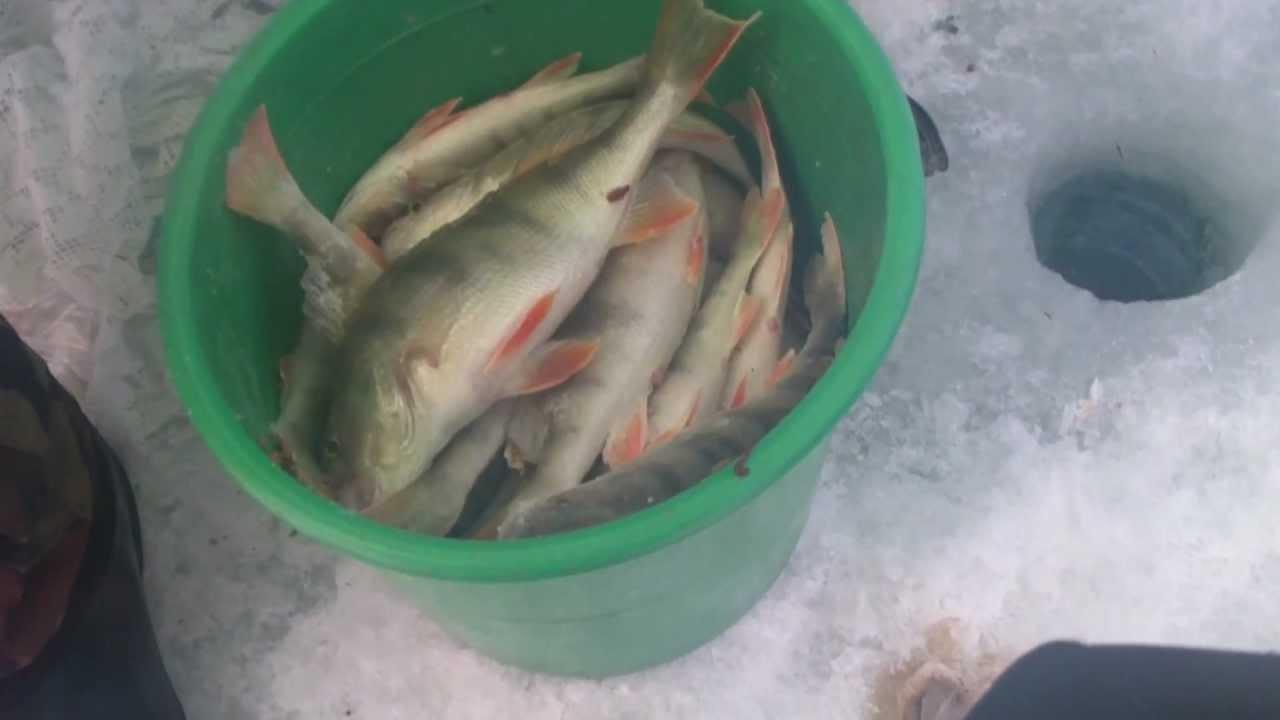 желкуарское водохранилище рыбалка