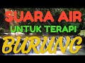 Suara Air Buat Terapi Burung  Mp3 - Mp4 Download