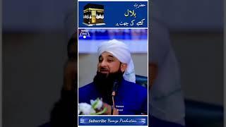 Hazrat Bilal Kaby Ki Chat Pr 🕋 | Saqib Raza Mustafai Status #Shorts