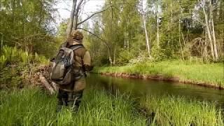 Рыбалка на лесной речке!  Ловля щуки на спиннинг