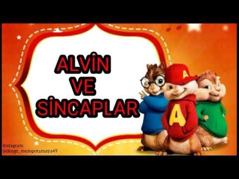 Alvin ve sincaplar HIRPALADIN SOL YANIMI (Sertaç dılda)