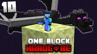 I Beat Minecraft Skyblock but You Only Get One Block (#10)