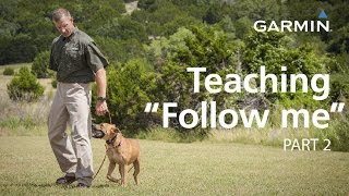 "e-Collar Training with Garmin: Teaching ""Follow Me"" and Collar Conditioning, Part 2"
