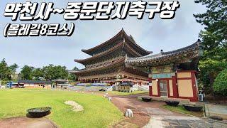 제주도 여행 - 약천사~중문단지축구장 (올레길8코스)