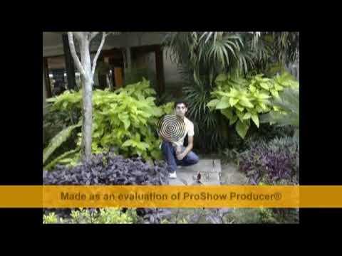 جامعة ملتميديا في ماليزيا multimedia university in malaysia