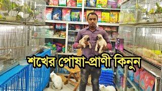 Biggest Pet Animals Market in Dhaka Katabon || Birds Price In Bangladesh 2020 ||Shawon Vlogs