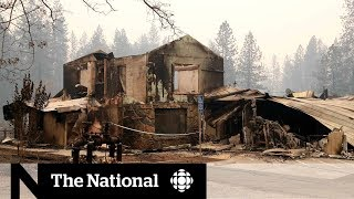 Crews intensify search for victims of California's deadliest wildfire