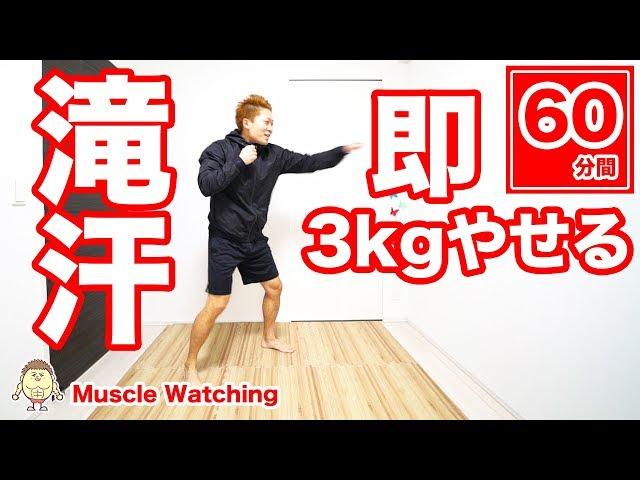【60分】即3kg痩せたい人集合!滝汗パンチ有酸素運動 | Muscle Watching