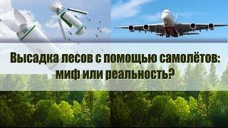 видео Метка деревьев в питомнике