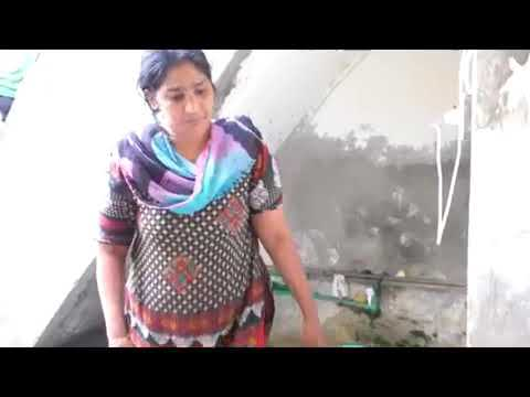 Slum Story of Minorities. A Project of TiEL school