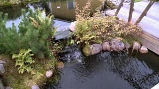 puutarha altaan rakentaminen