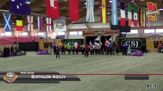 2017 World Agility Open Championships - Prize Givings thumbnail