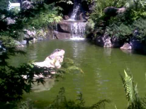 Cascada artificial jard n japon s youtube for Cascada artificial jardin