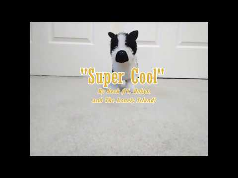 Super Cool Webkinz Boston Terrier Stop Motion