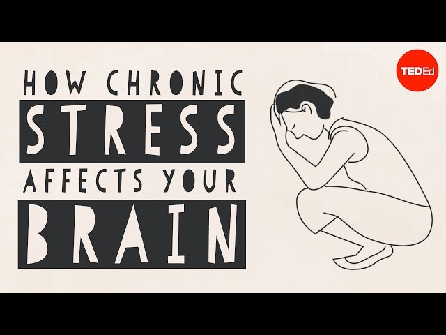 【TED-Ed】How stress affects your brain - Madhumita Murgia