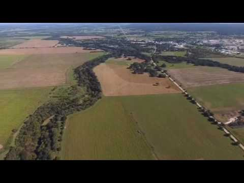 San Antonio Corn Maze