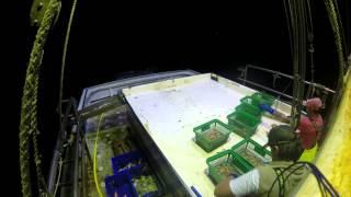 Night on east coast prawn trawler