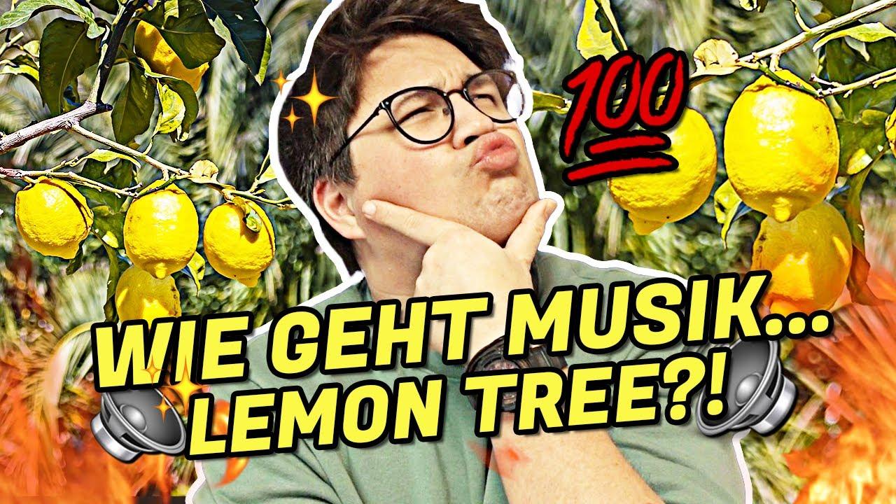 Die WAHRHEIT über LEMON TREE?! #Shorts | Vincent Lee