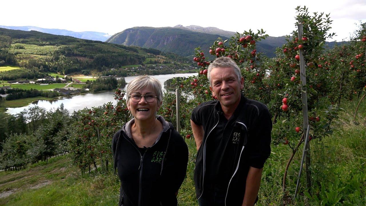 Thumbnail: Eple og sider fra Hardanger - smaker i verdensklasse