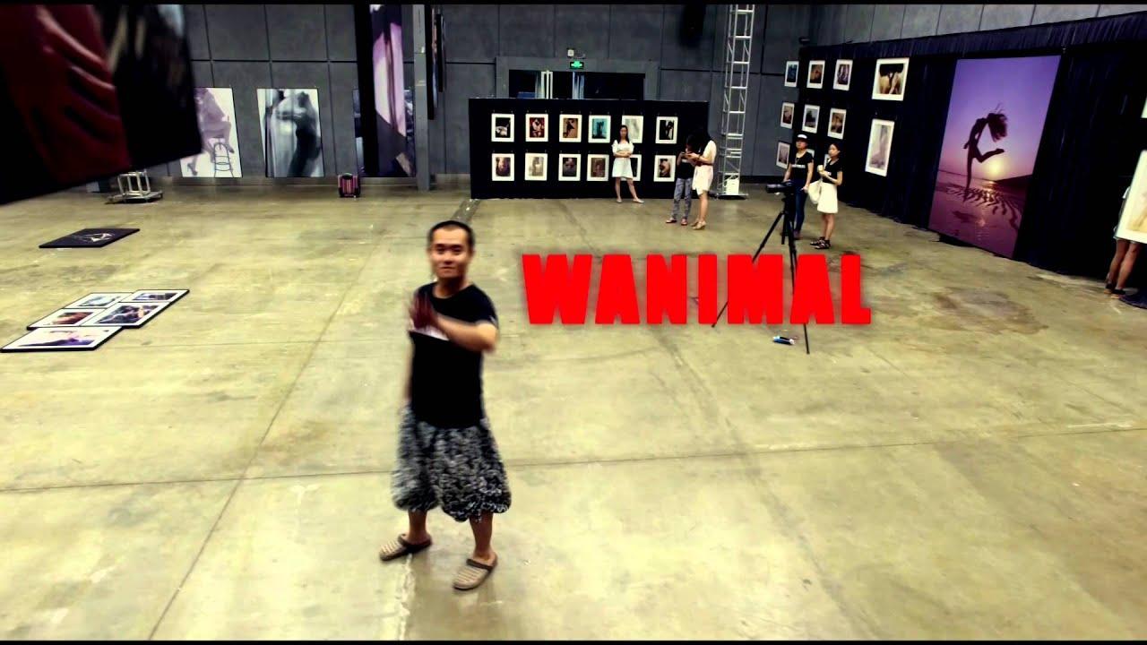 Wanimal Solo Exhibition