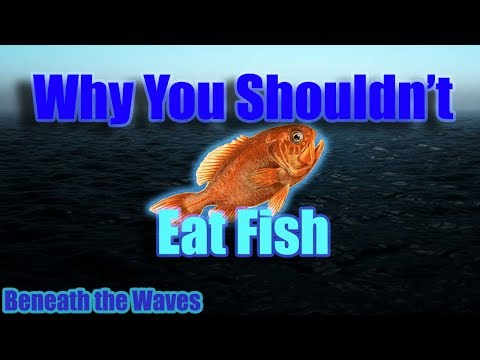 BTW: Why You Shouldn't Eat Fish