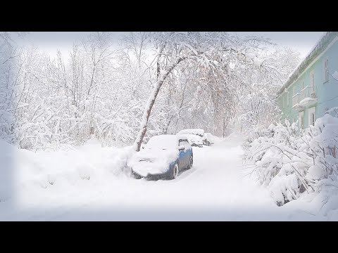 Russia 2018: Strongest Snowfall In Moscow. Why You Shouldn't Live In The Countryside