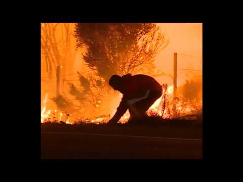 Restoring Faith in Humanity / man saves a rabbit from flames in California