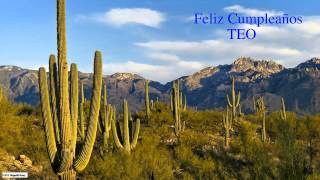 Teo  Nature & Naturaleza - Happy Birthday