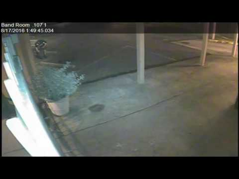 Surveillance Video: Newman School graffiti