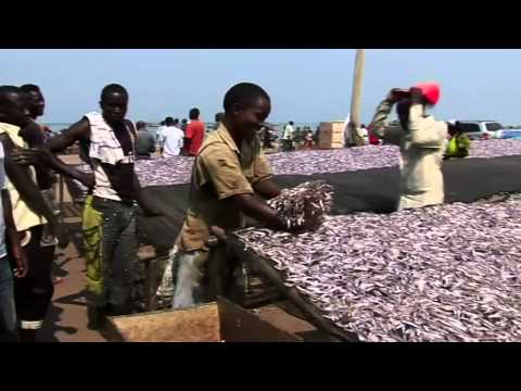 A FAO Successful Project In Burundi: ''Support To Post-harvest Fisheries Technology''