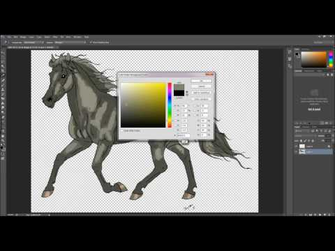 How to colour in Photoshop - Gray Horse