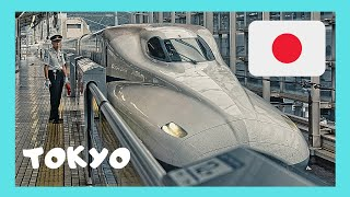 Train from Narita Airport to the center of TOKYO (Japan)