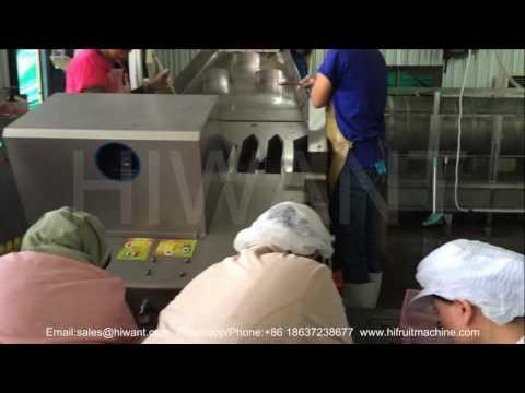 lychee longan peeler, litchi longan peeler pitter machine, lychee longan juice processing line
