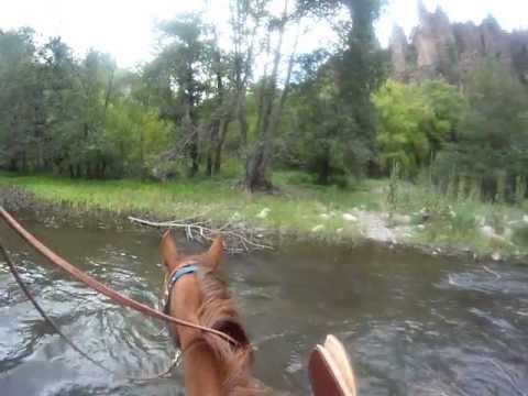 Horseback in New Mexico's Gila Wilderness