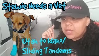 My Trucking Journey (Ep.065) 10/20/18 Stewie needs a vet/ 🚛💨 UT to ID/ Sliding Tandems