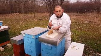 Грижа и подхранване на пчелите през зимата