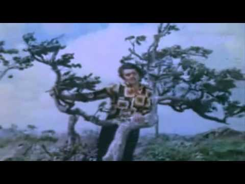 O Hansini Meri Hansini   Kishore Kumar   ZEHREELA INSAAN 1974   YouTube