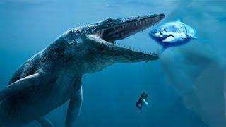Die 5 Größten Tier-Mysterien!