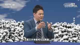 《透视新科技》 20210404 新型抗病棉| CCTV科教 - YouTube