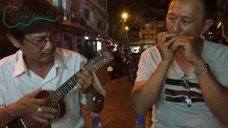 Áo anh sứt chỉ đường tà - Ukulele and Harmonica duo by Sang Judas and Vinh Nguyen