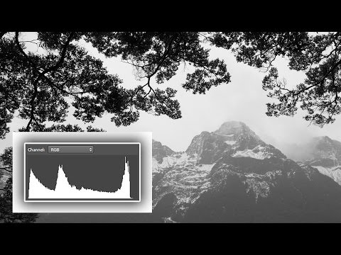 What the Heck is a  Histogram?? Understand Digital Photography