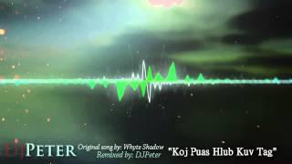 Whyte Shadow - Koj Puas Hlub Kuv Tag (DJPeter REmix)