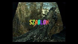 Zero - Szablon (prod. Leukocytowaty)