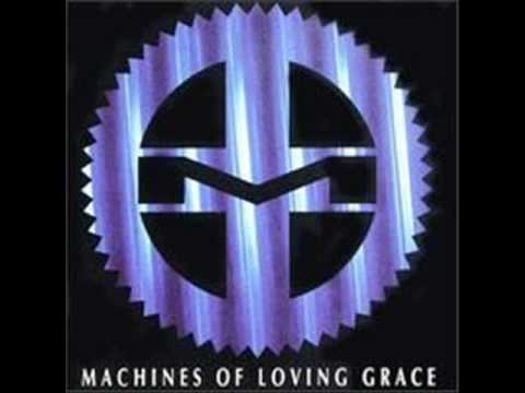 All I Really Need - Machines of Loving Grace