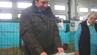 Gambar cover 60 Jahre Kaninchenzuchtverein.wmv