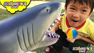 Our Pet Shark wants to play FETCH ball ------ playground pretend playtime with shark toys for kids