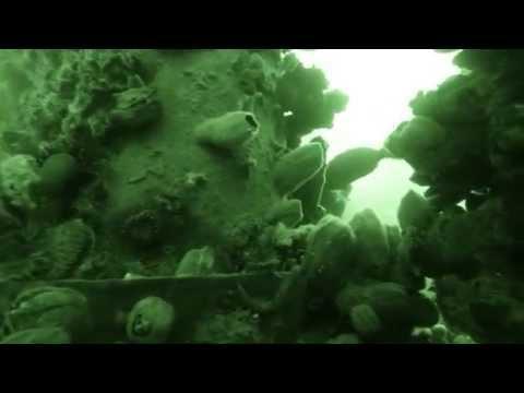 DIVING MANCORA PERU -  OLD OIL PLATFORM